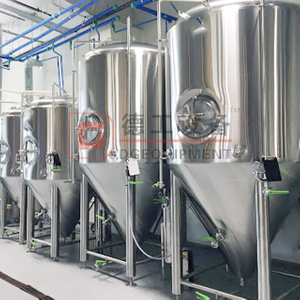 1000L 2000L 3000L AISI 304 Brewery Tanks for Beer Fermenter High Quality Turnkey Brewery for Sale
