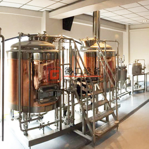 500L Brewpub/restaurant Used Customized Flexible SUS304/316 Copper Micro Beer Brewery Equipment