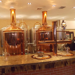 300L Brewpub/restaurant Used Copper Microbrewery Equipment Complete Home Beer Brewing Equipment
