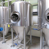 1000L Stainless Steel Isobaric Beer Fermentation Tank Craft Conical Beer Unitank for Fermenting Beer